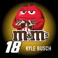 KYLE BUSCH 18 MM's