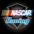 X NASCAR RACING